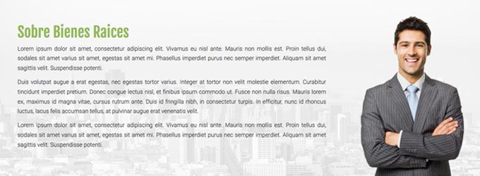 paginas web economicas sobre nosotros